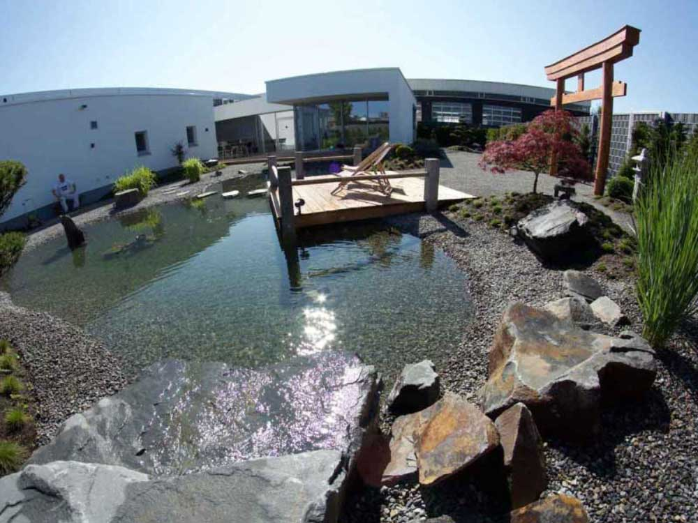 Mit Natur- oder Schwimmteichen entstehen besondere Orte im neuen Garten