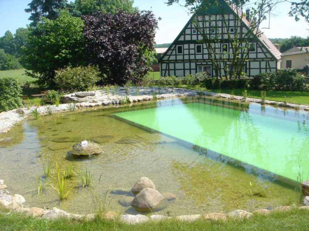 Eine großzügige Filterzone ist bei großen Schwimmteichen unumgänglich