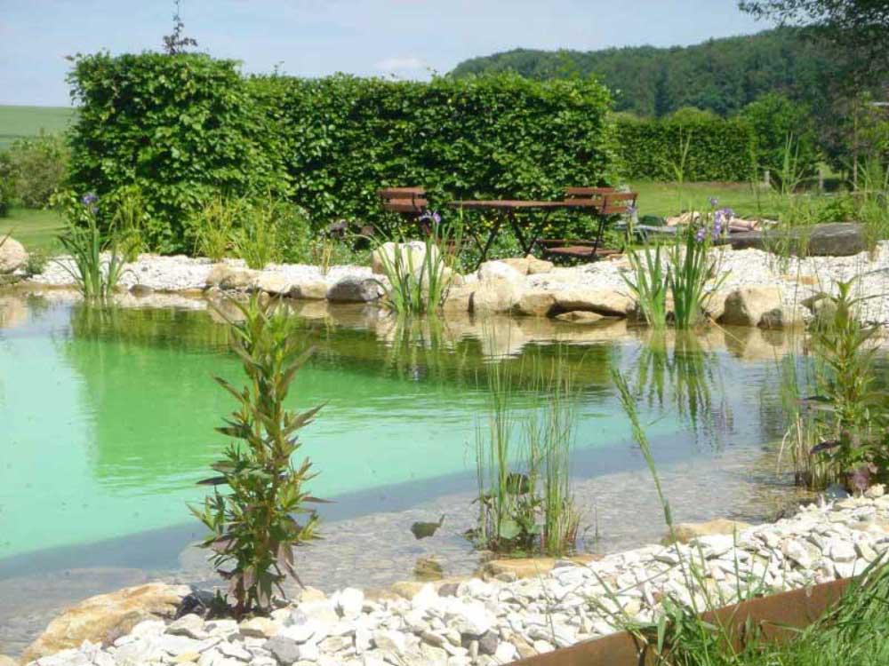 Kleine Sitzplätze und eine vielfältige Bepflanzung sind charakteristisch für Naturteiche