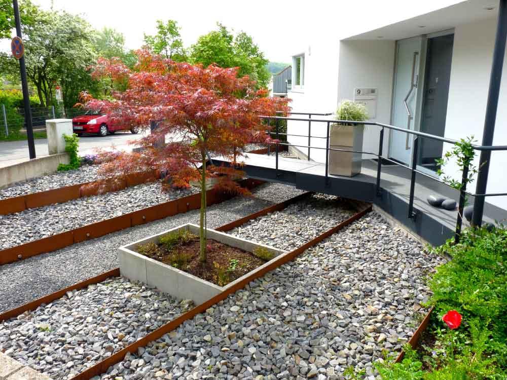 Ein Fächerahorn zieht als Solitärpflanzung die Blicke im Vorgarten auf sich