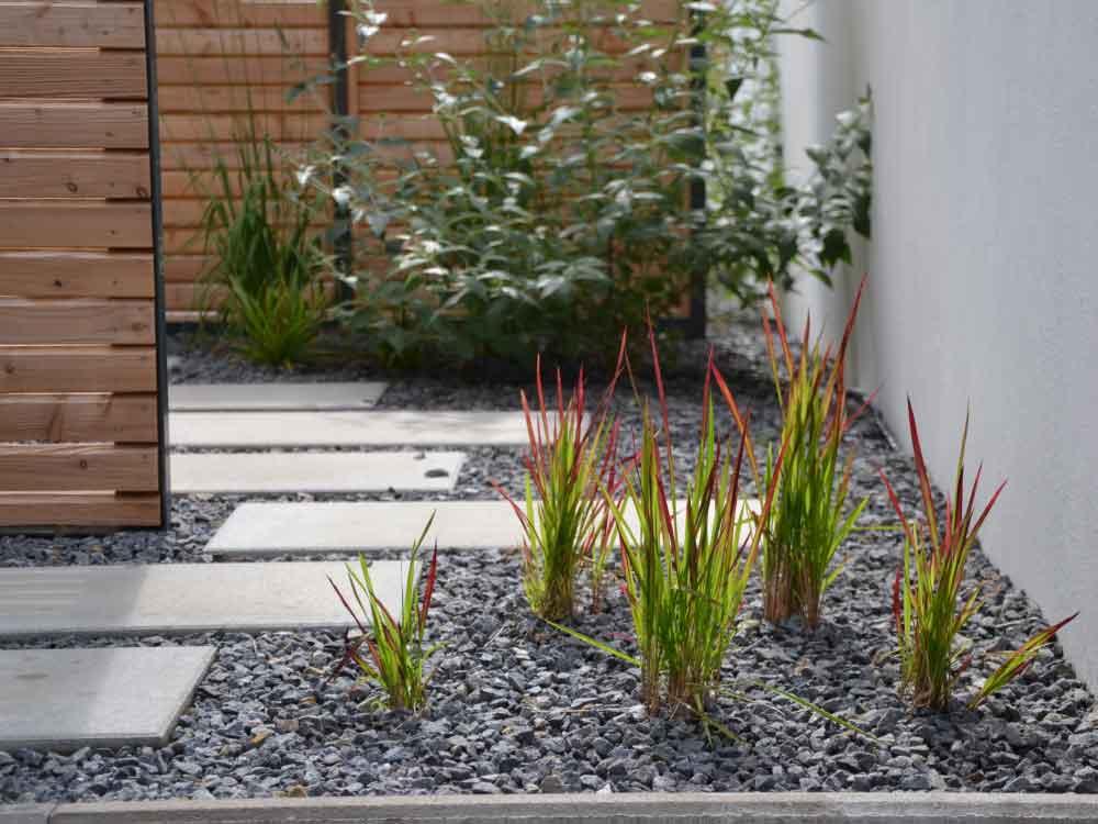 Gräser und Blütensträucher begleiten den Trittplattenweg aus Betonplatten