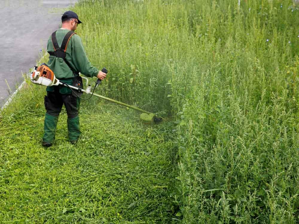 Effektive Rasen- und Grünflächenpflege durch Maschineneinsatz