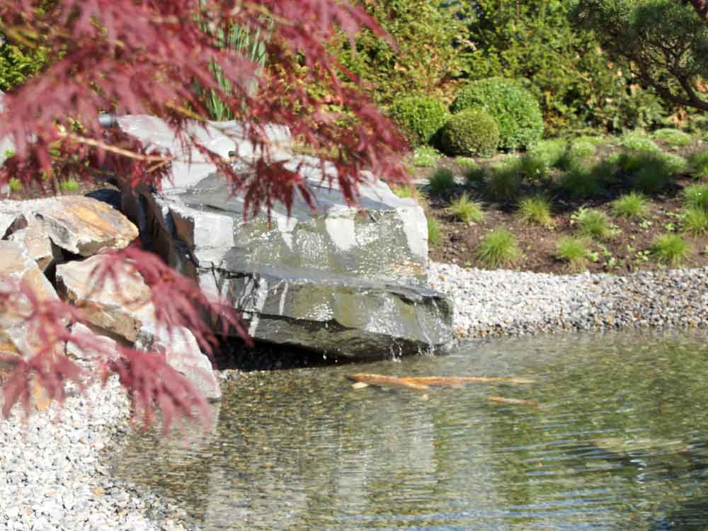 Japanischer Garten mit Koiteich bei Auto-Weller