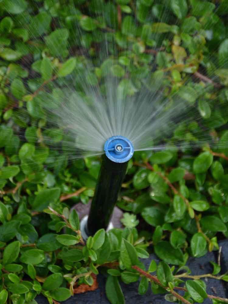 Diverse Düsen- und Regnertypen gewährleisten eine optimale Wasserversorgung.