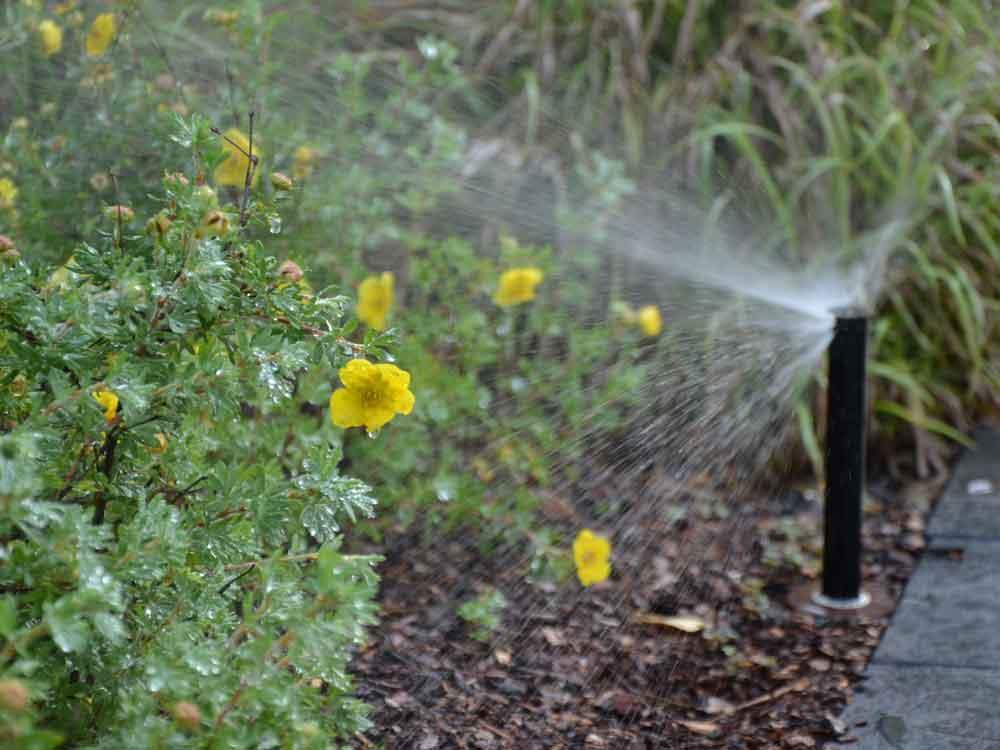 Punktgenaue Beregnung durch hochwertige und langlebige Bewässerungsprodukte.