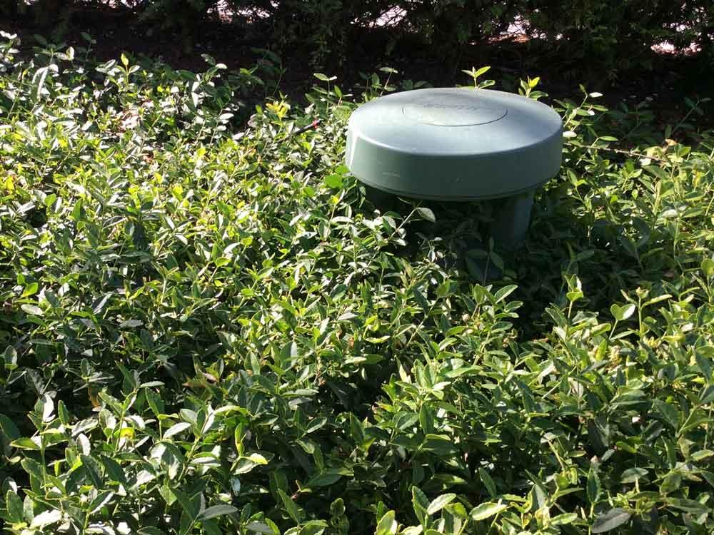 Eingefügt in die Bepflanzung werden die Outdoor-Boxen fast unsichtbar