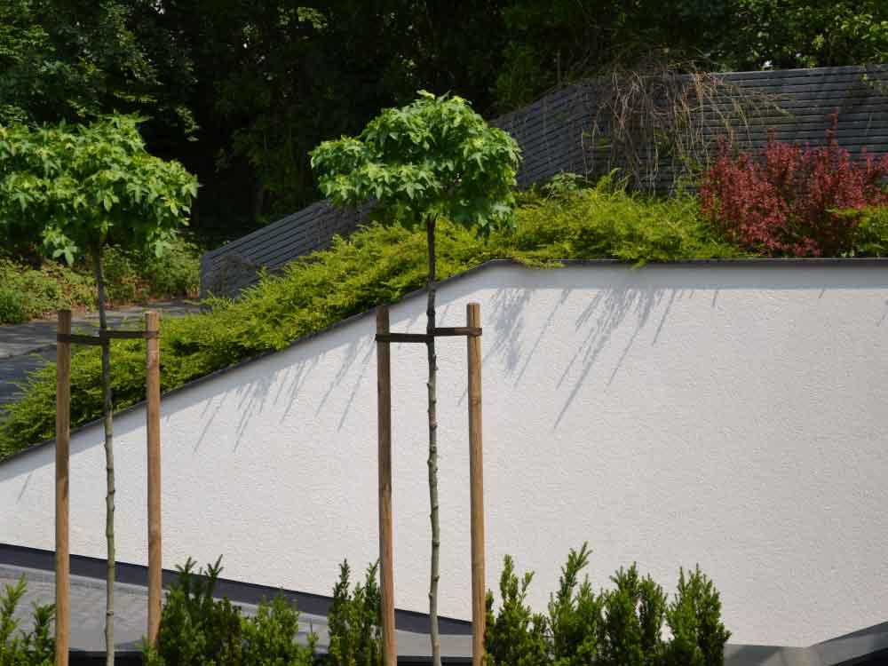 Privatgarten-Lüstringen_bepflanzung