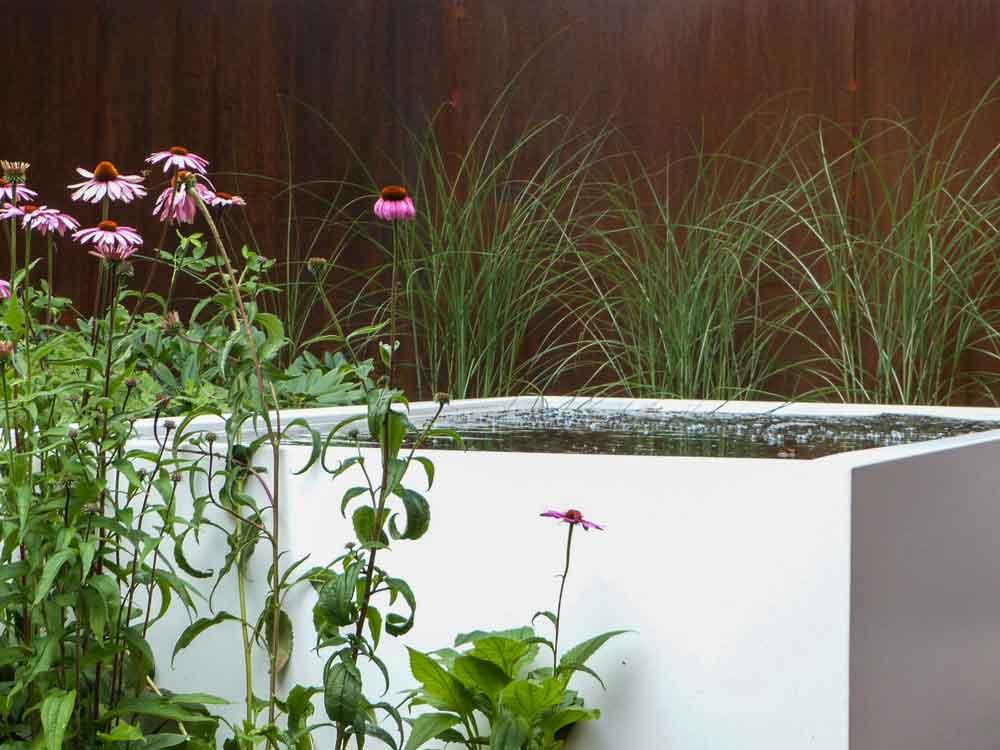 Wasserbecken überzeugen vor allem durch Ihre ruhige und glatte Wasseroberfläche